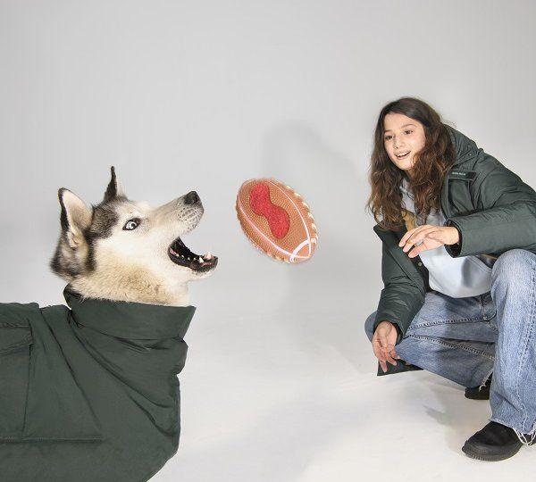 woolrich dog4